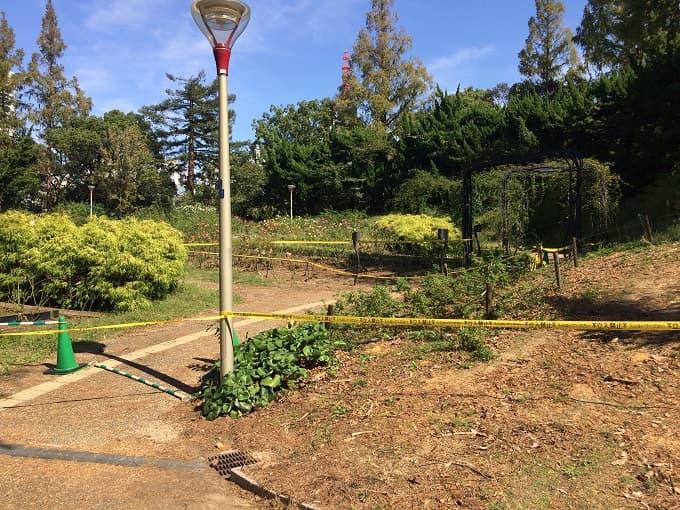 靱公園の台風21号による被害